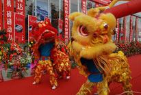 双人舞狮表演