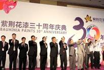 公司三十周年庆典策划方案